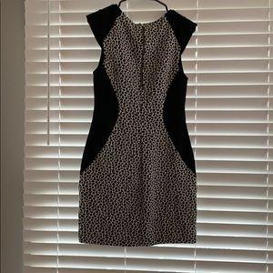 Express Dresses - Black & White Express dress